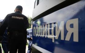 На улицы Москвы вышла туристическая полиция