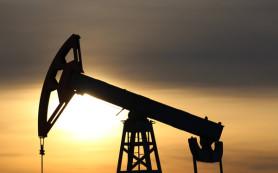 Нефть подорожала на фоне событий в Ливии