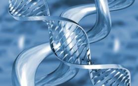 У людей найдены гены простейших организмов