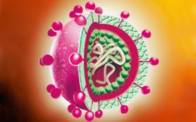 Гепатит C: диагностика, лечение, Совальди