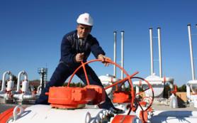 Турецкая Botas получила скидку от «Газпрома»