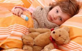 Возбудители гриппа
