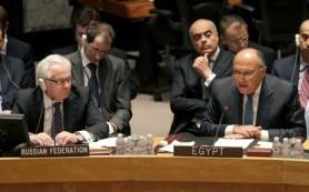 Россия представила в Совбезе ООН резолюцию по Йемену