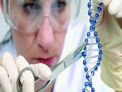 Ученые создали карту ремонта ДНК всего генома человека