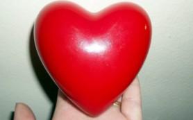 Ученые представили виртуальный видеотур по бьющемуся сердцу