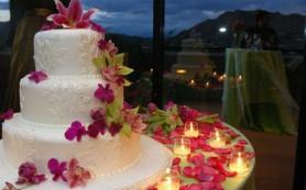 Как выбрать торт