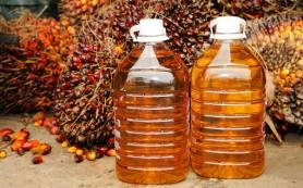 Правительство может ввести ограничения на использование пальмового масла