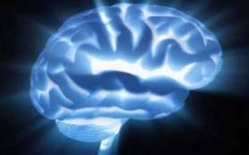 Будущее мозга. Каким оно будет?