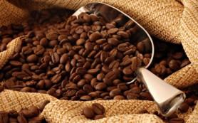 Кофе содержит эффективное средство против облысения, говорят ученые