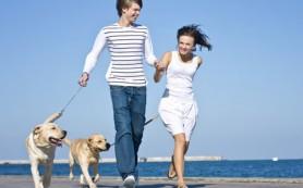 Домашние животные помогают людям налаживать контакты с окружающими