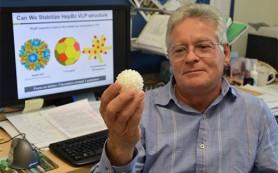 Биотехнологи выпотрошили вирус гепатита и сделали из него «умную частицу»