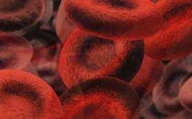 Ученые обнаружили клетки, способные восстановить поврежденные артерии