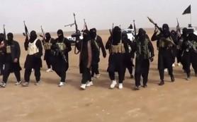 В Сирии боевики «ИГ» убили иранского генерала