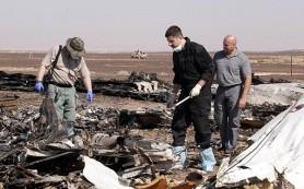 В Египте задержали двух подозреваемых в причастности к крушению А321