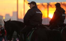 Безопасность на матче сборных России и Хорватии по футболу обеспечат 675 полицейских