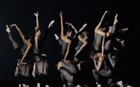 На фестивале современного танца DanceInversion представили проект «Торобака»
