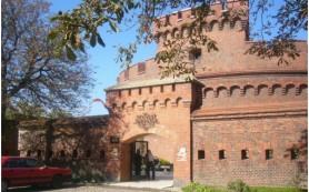 В Калининградском музее янтаря проходит выставка «Шедевры янтарного фонда»