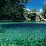 Где находится самая чистая река в мире и что показывают тест полоски глюкометр