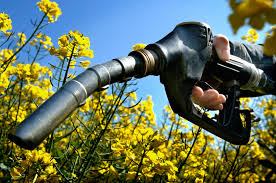 Виды автомобильного топлива