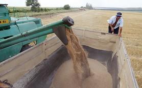 Российские экспортеры возобновили поставки зерна в Турцию
