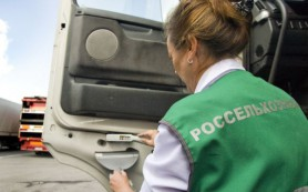 В Калининград не пустили 108 тонн турецкой курятины