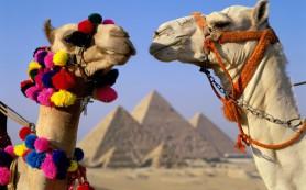 Египет обещают открыть