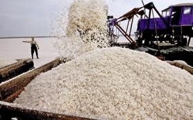Путина попросили запретить ввоз технической соли с Украины