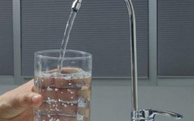Ученые назвали недостаток воды главной причиной развития ожирения