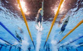 В олимпийском бассейне бьют мировые рекорды