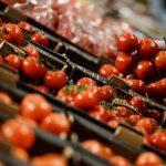 Россия запретила поставки овощей и фруктов из Египта