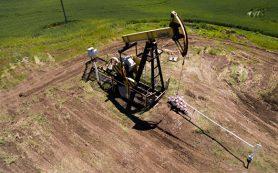 Нефть продолжает дорожать в надежде на поддержку сокращения добычи