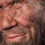 Палеоантропологи выяснили, что неандертальцы были коллекционерами