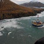 Shell закроет давшее название эталонной марке нефти месторождение Brent