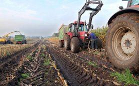 Развитие сельского хозяйства: гранты, субсидии и дотации