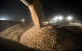 Российскую пшеницу впервые отправили в Турцию после отмены пошлин