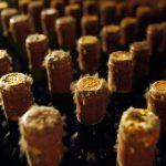 Роспотребнадзор разрешил поставки 20 видов молдавских вин
