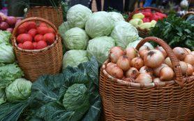 Судан планирует расширить ассортимент экспорта сельхозпродукции в Россию