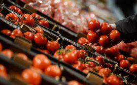 Россия не возобновит поставки турецких томатов раньше зимы