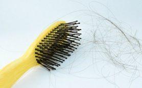 Ученые обнаружили, что люди чаще теряют волосы летом и осенью