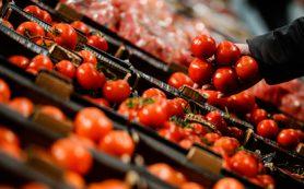 Правительство разрешило ввоз турецких помидоров в Россию