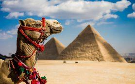 РФ и Египет могут в декабре подписать соглашение об авиасообщении