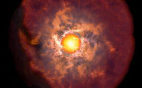 Сверхновые, формируемые из красных гигантов, удивили астрономов