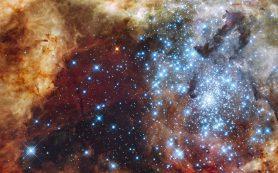 Волны магнитного поля обусловливают «хаос» в звездообразовательных облаках