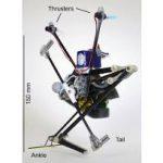Одноногого робота научили точным прыжкам