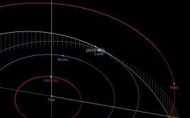 Недавно открытый астероид диаметром 50 метров проходит мимо Земли