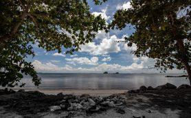На Бали запретили одноразовый пластик: от пакетов до трубочек для коктейлей