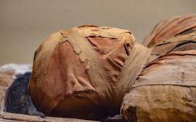 Ученые рассказали о смертельной болезни, найденной в древних мумиях