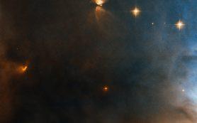 Хаббл рекламирует команду звезд в NGC 1333