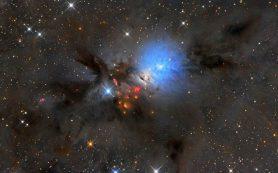 Химический состав турбулентной межзвездной среды