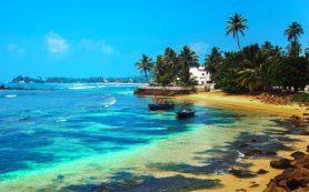 Никогда еще туры на Шри-Ланку не стоили так дешево